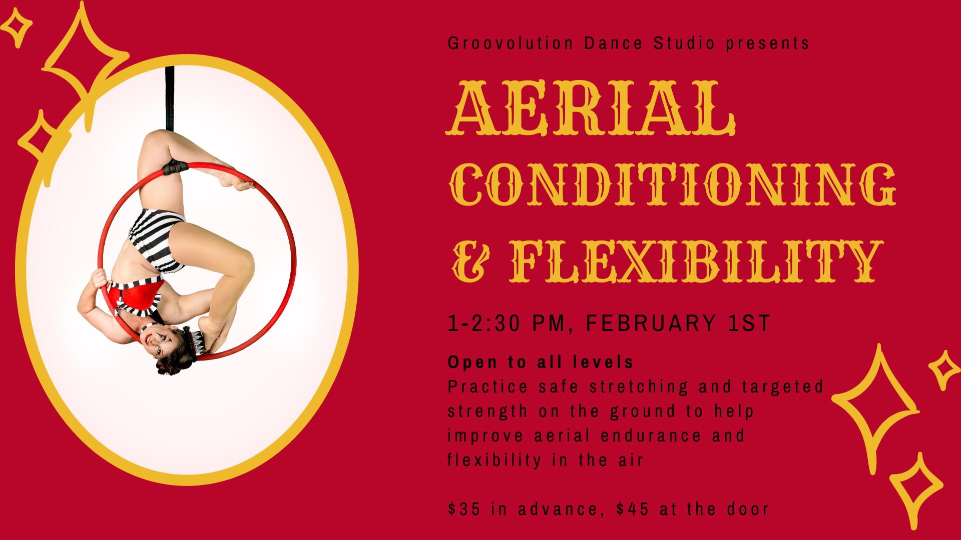 Aerial Cond. and Flex (1)
